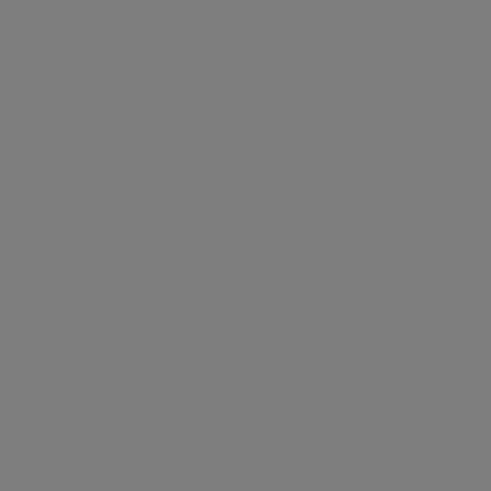 PRIEM Seguridad